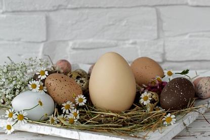 Как варить яйца в мультиварке рецепты с фото