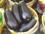 Как приготовить баклажаны в мультиварке рецепт с фото
